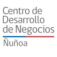 Centro-Desarrollo-Negocios-Ñuñoa